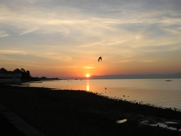 Photo by Author Sunrise Lake Chapala